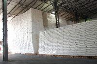 Wheat Flour Top/First Grade