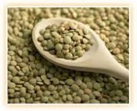 Lentils (Lens Culinaris), Whole Red, Eston, Laird, Richlea, Green, Yellow, & split