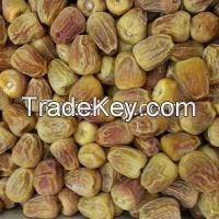 Saudi sukkaray dates manufacturer