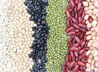Small Black And Red Kidney Beans For Sale