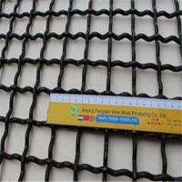 Stainles steel Crimped wire mesh