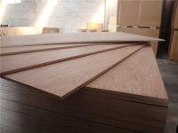 Good Price Laminated Plywood For Furniture/furniture grade plywood panel