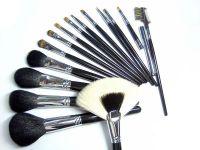 Luxurious Artist Cosmetic Brushes Set(15pcs)