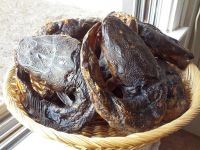 Smoked Dried Cat Fish For Sale And Export