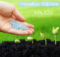 White Granular Fertilizer Potassium Sulphate for Fruit Trees