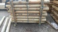 Debarked pulpwood and Edged pine board 1st grade