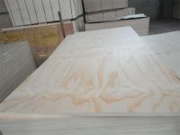 Competitive Price Commercial Plywood for Furniture, decoration and packing