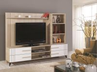 Pro-TV Stands