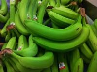 Green And Yellow Bananas Leading Supplier