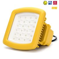 UL IECEX ATEX zone 1 class 1 LED explosion proof lights 20W-200W explosion proof LED flood lights