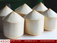 DIAMOND SHAPE YOUNG COCONUT FROM VIETNAM