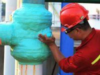 visco-elasticity wrap