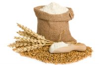 Flour all grades and kind including milling wheat