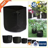 Fabric grow bag