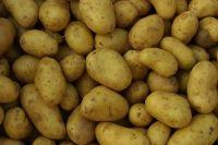 Organic Brushed Irish Potatoes
