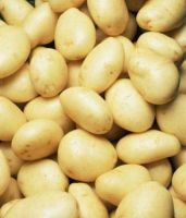 Organic Washed Irish Potatoes