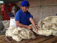 Dried Donkey Hides/Goat Skin