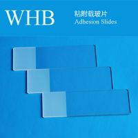 Wholesale High Quality WHB Colorful Adhesion Slides