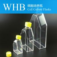 High Quality Seal / Breathable Cap Style 50 Ml / 250ml / 600ml Cell Culture Flasks