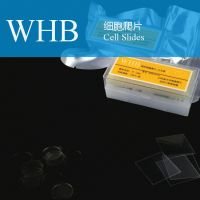 Wholesale TC Treatment Cover Glass