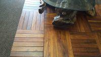 Parquet Kiaat Flooring