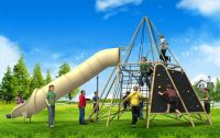 Professional QS Teenager Series Outdoor Playground Equipment Slide Tunnel&Climbing Wall WD-QS019