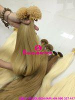 Pre bonded human hair U tip