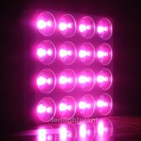 1600W Greenhouse/Hydroponics Plants LED Grow Lights from factory directly Wholesales