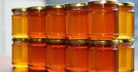 Honey | Raw Honey