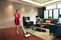 Non-vacuum Bionic Cleaner Revolutionary Floor care products -Hizero