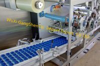 Automatic baby detergent Liquid podsPacking Machine
