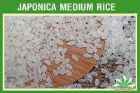 JAPONICA WHITE RICE 5% BROKEN - HIGH QUALITY