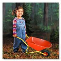 plastic kids garden tools wheelbarrow WB0208