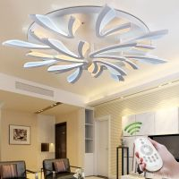 New Acrylic Modern led ceiling lights