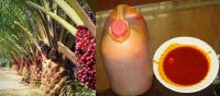 Palm Oil,Refined Palm Oil,Crude Palm Oil 100% Refined Palm oil