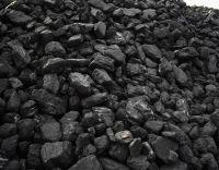 Coal-Nuts