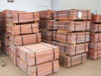 Copper Cathodes for Sell