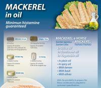 Mackerels in vegetable oil/tomato sauce