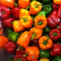 PEPPERS, CAPSICUMS