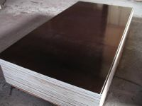commercial plywood, building plywood, 1220x2440mm