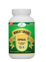 WHEAT GRASS POWDER CAPSULS