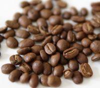 Roasted Arabica Coffee Beans from Sumatra