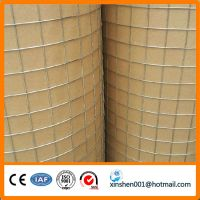 zinc plated 1 inch galvanized welded wire mesh