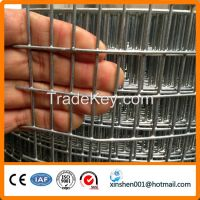 Low carbon hot dipped galvanized� welded� wire� mesh