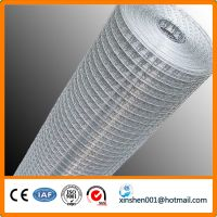 Galvanized/pvc coated welded wire mesh / 6x6 reinforcing welded wire m