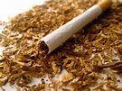 Toacco,Cigarette