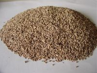 DRIED KERNELS from fruits