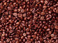 Garnicia kola (Bitter Kola), Cocoa   Beans, Walnuts, Cashew Nuts, Cassava Chips