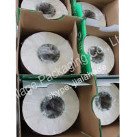 Germany Standard Silage Film, Hot Sale Packing Film for Grass, Agriculture Packing Plastic Wrap Film