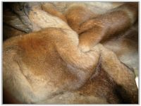 Chinese rabbit furs from LEOSKIN FURS